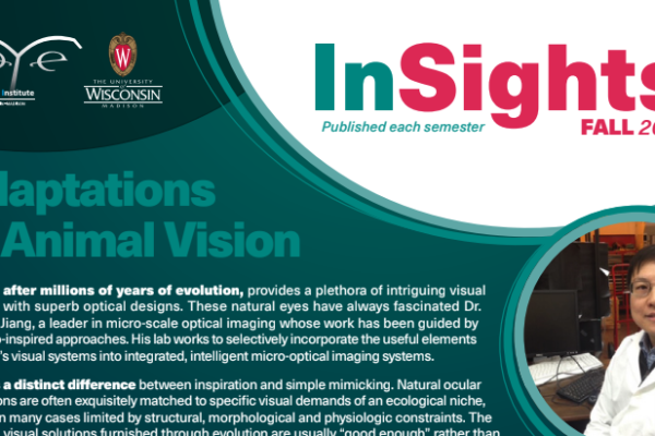 InSights Cover Fall 2017