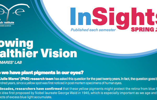 InSights Cover Spring 2018