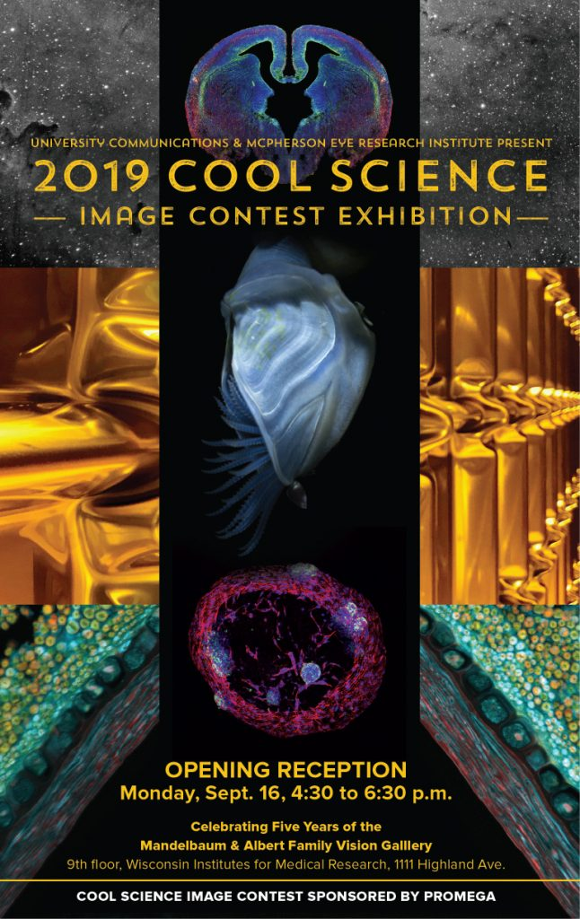 Cool Science Images 2019 poster